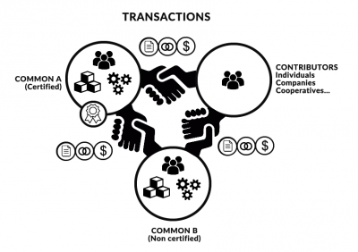 Contributive-commons-transaction-en.png